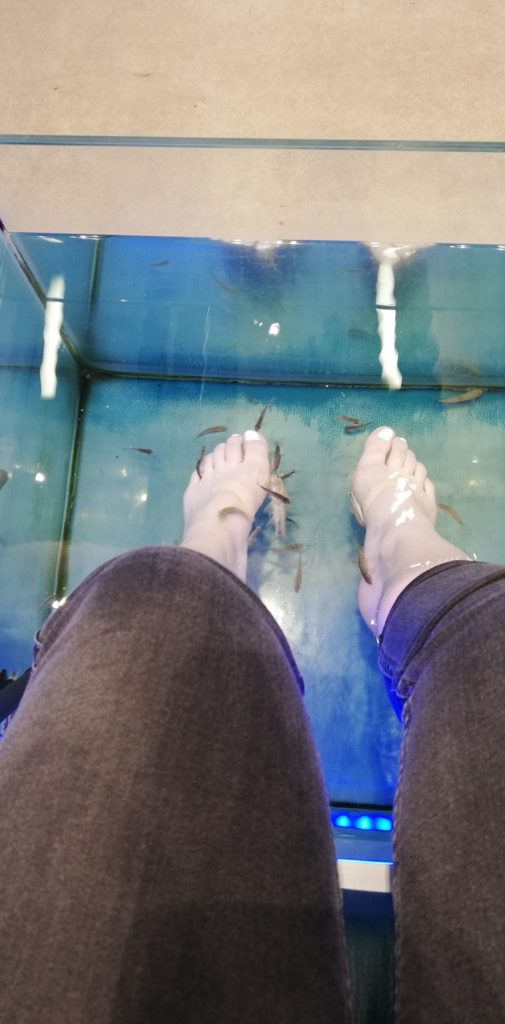 Doctor Fish Athen