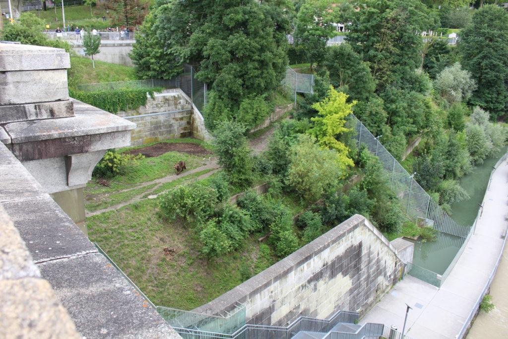 Bärenpark von der Nydeggbrücke